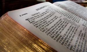 ARTICOLI BIBBIA
