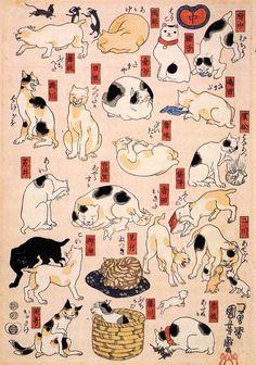 CatsTokaidoKUNIYOSHI