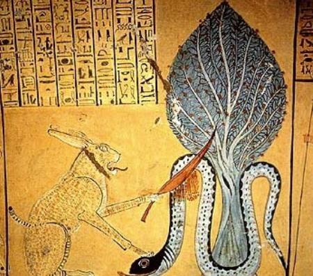 Matou contro Apophis